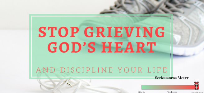 Stop Grieving God's Heart and Discipline Your Life {Free PDF